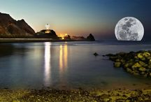 """Goodnight  Moon"" / by Robyn McDowell"