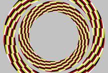 Optical illusions / by Meg Morrison