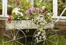 garden & flowers / by LeAnn Schmitt
