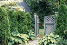 Landscaping ideas / by Pattie Foote