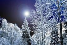 Winter wonderland / Scenes, decorating / by Brenda Williams