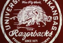 Arkansas razorbacks / by Sydney McNamara