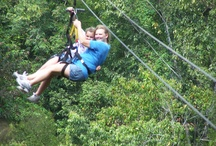 Zip lining in Jamaica / by Paradise Palms Jamaica