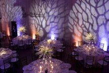 Event and Party Planning / by Tina Lane Events