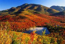 NY's Autumn Scenery / by Syracuse Athletics