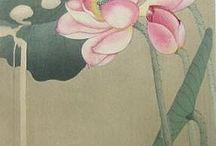 Oriental / by Ginger Li