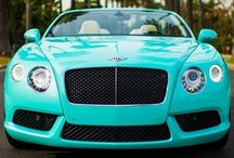 Tiffany Blue's / Love this color / by Lisa Jones
