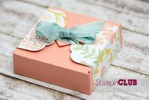 SU! Envelope Punch Board / by Brandi Rood