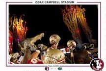 FSU Photo Retrospective / by Florida State Seminoles