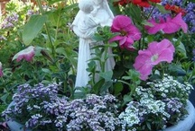 Mary Garden / by Sue