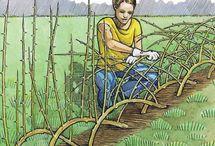 Gardening / by Beryl Shiver