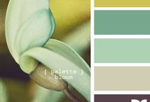 Color Inspiration / by Angie Johnson