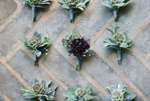 Modern Wedding // Grooms + Boutonnieres / by Kate Myhre // Modernly Wed
