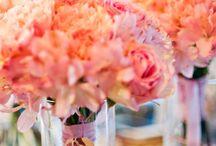 Flowers / by Kristen Lorenz