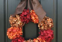 Fall / by LuAnn Loynachan-Kircher
