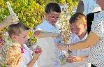 Ceremonies -- Family Sand Ceremony / by A Forever After Wedding Rev. Patricia Borsum