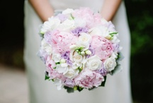 Wedding Flowers / by Daniel Sheehan