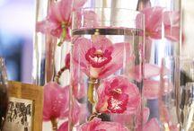 Flowers / by Sucely Trujillo