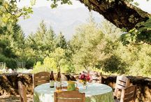 Wine Country Napa / by Wine  Channel TV