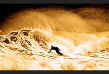 Surf / by Brian James