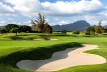 Golf Getaway / Find the perfect golf vacation for enthusiasts of all levels, offering the ideal blend of accommodations and world-class golf courses at great golf resorts around the world. / by Hyatt Hotels & Resorts