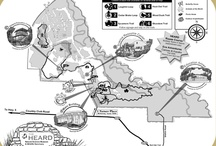 Favorite Places & Spaces / by Heard Natural Science Museum & Wildlife Sanctuary