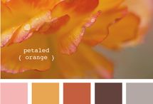 Color Palettes / by Florence McCall