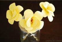 flower tutorials / by Mel the Crafty Scientist