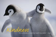 Kindness comes in Many Forms / Moments of Kindness are the Best / by Becky ;)