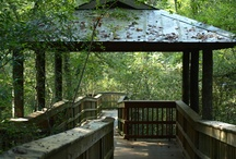Lafayette Outdoors & Nature / by Lafayette Travel