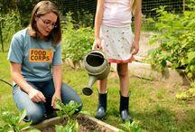 School gardening / by Scott and Tara Sutter
