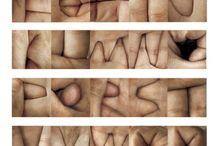 Pupil Stimuli / by Melanee Marshall