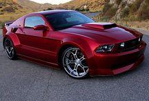 Mustang  / by PVS