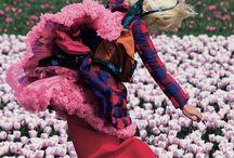 prints & pattern / by Priscila Perassi
