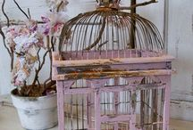 birdcage / by Alice Boon