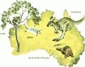 Australia Ideas and Clipart / by Lori Moldenhauer
