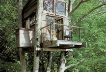 Architecture - Tree Houses / by Bryant Walker