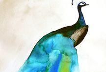 fauna / by Carrie Kilgore
