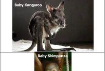 Hilarious!!! / by Amanda Jimerson Austin