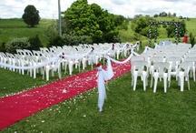 Wedding / by Emily Rhind
