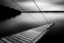 Black and White / by Carisa Caruso