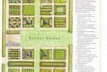 Garden / by Janie Friedman