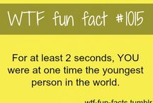 Facts, Posts and funny pics / by Mikki Wardenaar