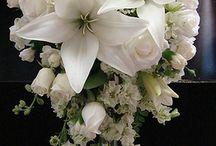 Wedding - Flowers / by Kristy Eedens