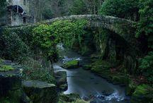Scotland / by Larry Preston