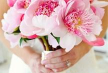 wedding bouquets / by Mari Crea