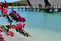 Noumea, New Caledonia / by Bianca Jessica