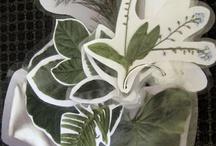 Herbal Activities / by Herbal Roots zine