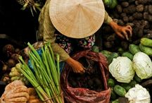 Asian's Food...... / by Lucila Sedano