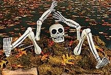 Halloween / by Loretta Hirsch